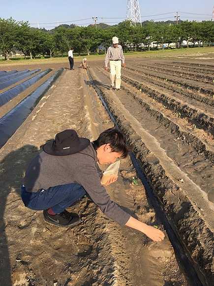 無農薬農業に希望を持ってセラミックを撒く人