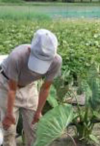 セラミックの開発者、山本路子先生と畑で農作業をする農家さん